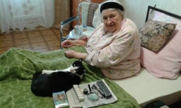 В Кисловодском центре социального обслуживания людей будут лечить кошками