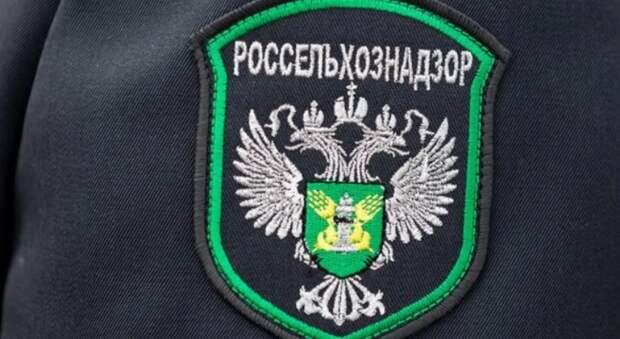 Москва юридически оформляет смерть украинского транзита через Россию