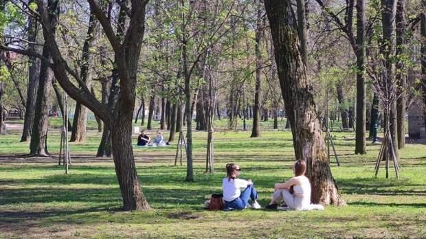Петербуржцам пообещали теплую погоду без осадков