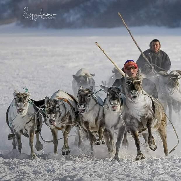 Сергей Анисимов документирует повседневную жизнь Северо-Западной Сибири