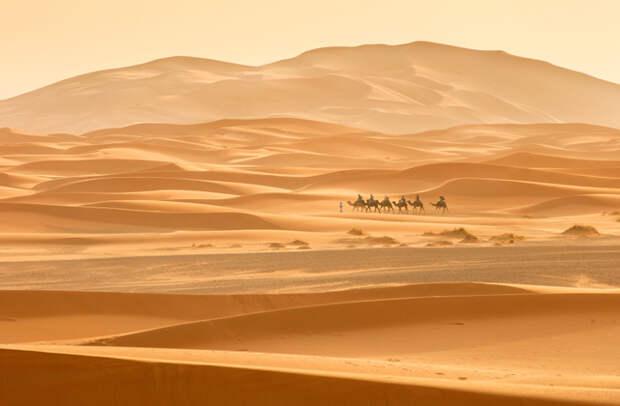 Вопрос на засыпку: почему в пустынях так холодно по ночам?