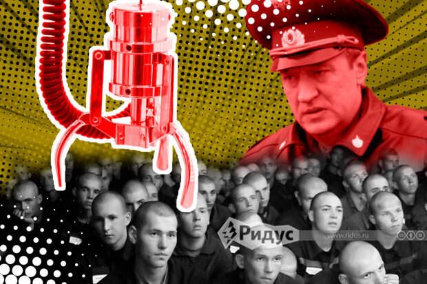 Тюремные университеты: как работает неестественный отбор на«красных зонах»