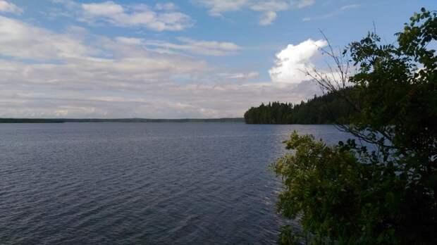 ФАН выяснил подробности гибели подростков на озере в Петрозаводске