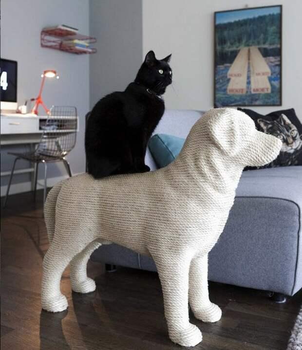 cathouse01 Дизайн для котов