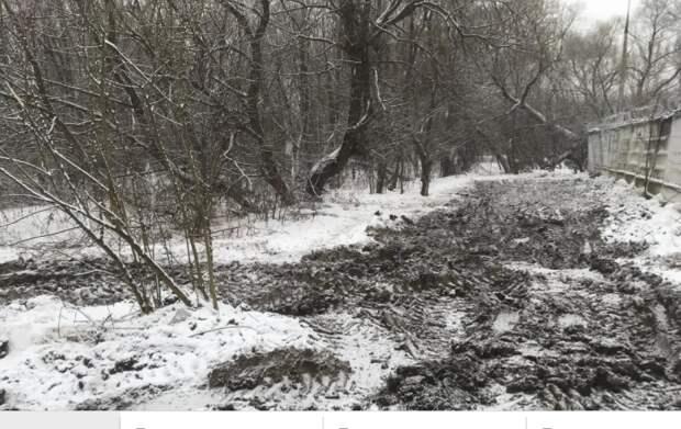 Природный парк «Тушинский» очистили от заброшенных строений