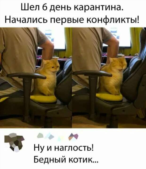 Смешные комментарии. Подборка chert-poberi-kom-chert-poberi-kom-28570217102020-14 картинка chert-poberi-kom-28570217102020-14