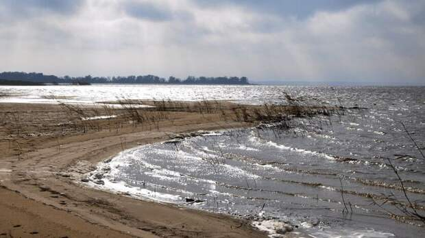 Оздоровление реки Дон могут включить внацпроект «Экология»