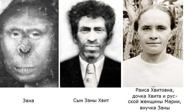Зана: что выяснили советские ученые о женщине-йети из Абхазии