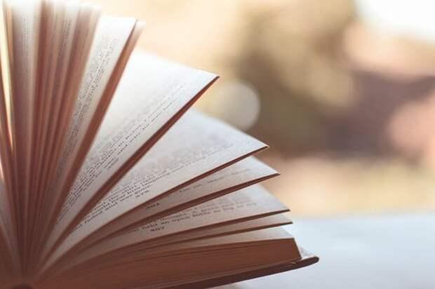 Специалист из Северного поделилась лайфхаками для приобщения детей к чтению