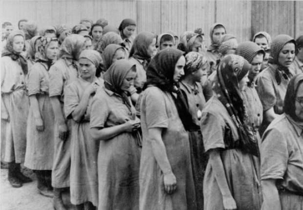 Беременные женщины в лагере Освенцим.