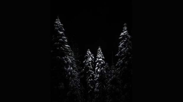Изгоняющие тьму. Пейзажи, на которых ночь не бесцветна