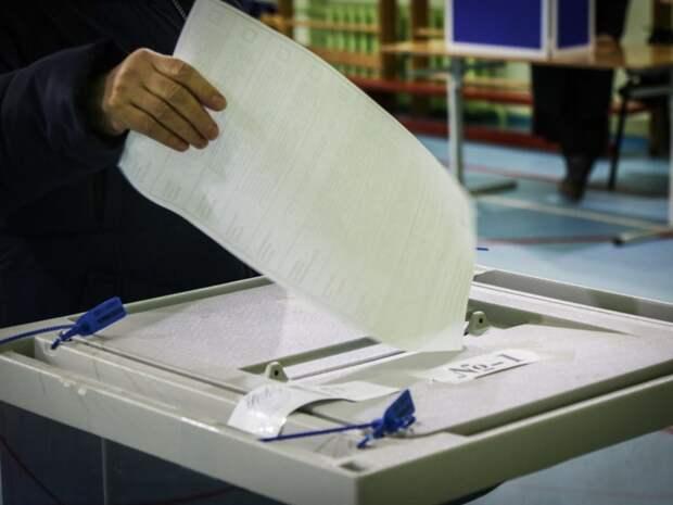 В Петербурге почти не выросла явка на выборах