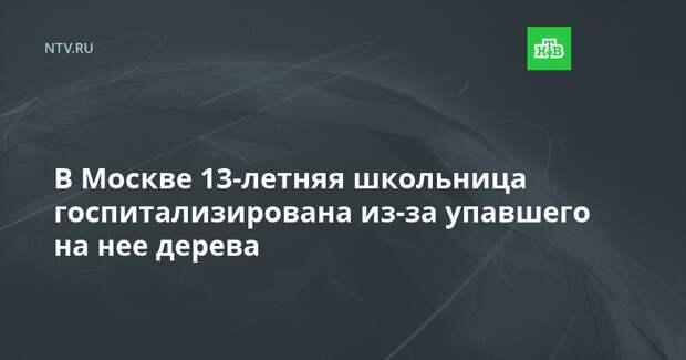 В Москве 13-летняя школьница госпитализирована из-за упавшего на нее дерева