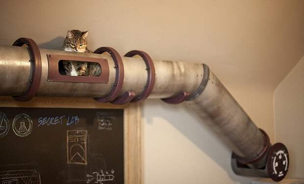 cathouse03 Дизайн для котов