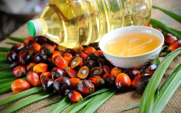 Опасно ли для россиян пальмовое масло?