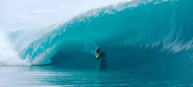 «На гребне волны»: Грабежи во имя природы