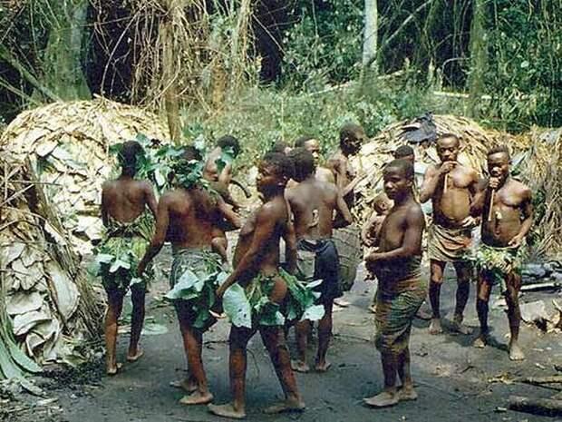Мбути.Племя самых маленьких пигмеев даже среди пигмеев