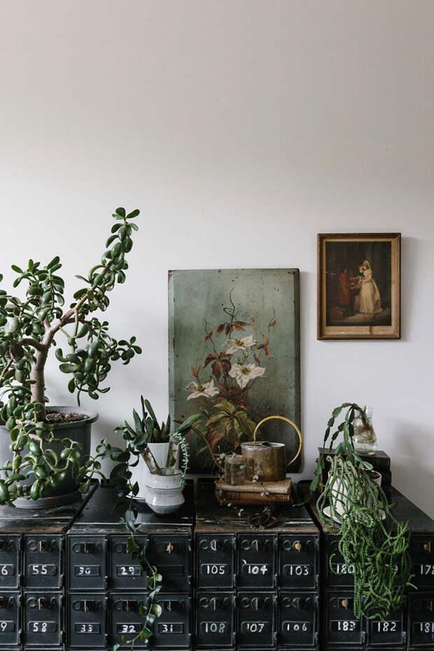 Винтажный декор и душевная обстановка: дом фотографа в Австралии