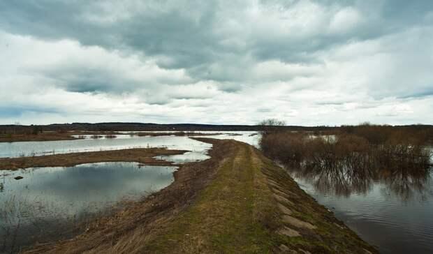 В Башкирии за сутки половодьем затопило 395 участков