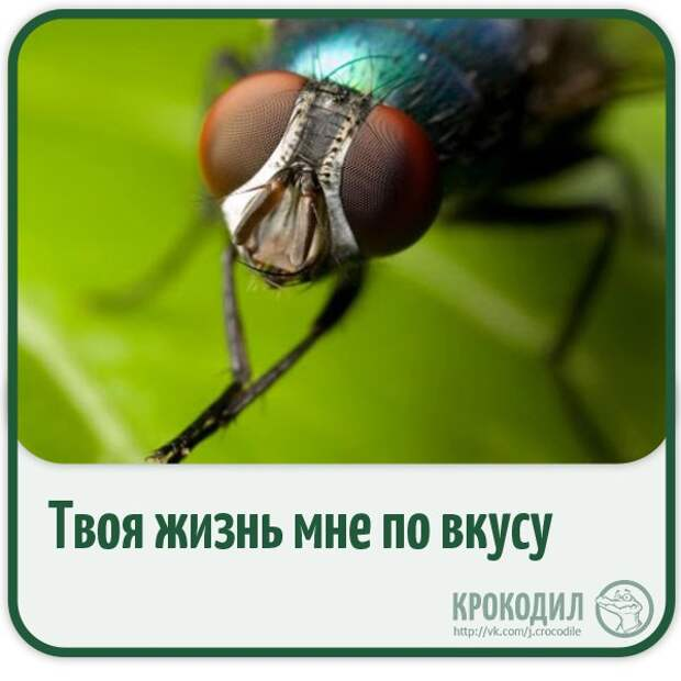 KsaU_-q3Ip4