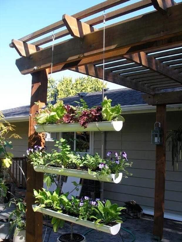 Вертикальное озеленения позволит зонировать пространство, выступая в виде своеобразной перегородки.