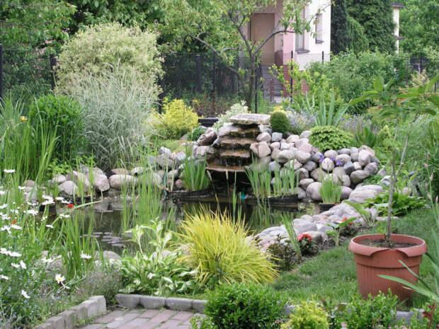 Небольшой пруд, украшенный природными камнями, станет лучшим декоративным украшением дачи или загородного дома.