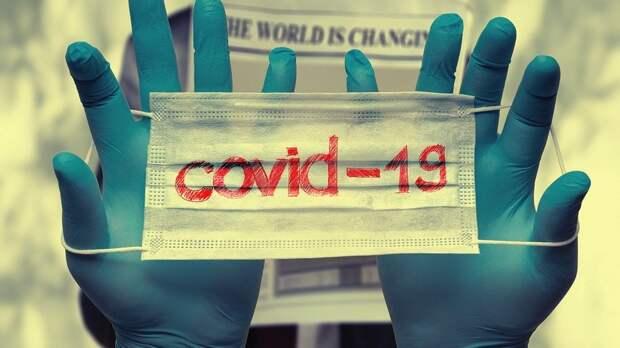 Вспышка коронавируса исчезнет сама по себе: ученый выдвинул неожиданную теорию
