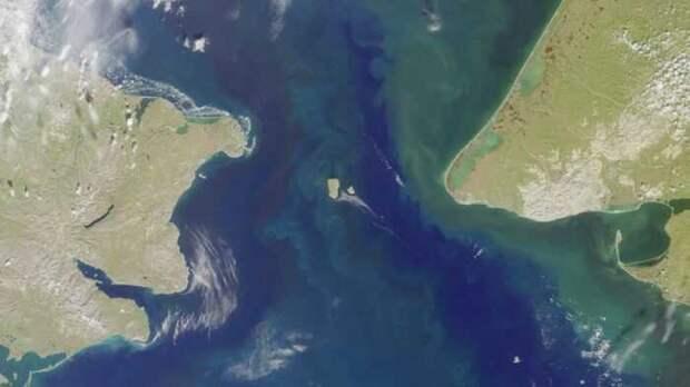 Российский Ан-26 подрезал в Беринговом море американский ледокол