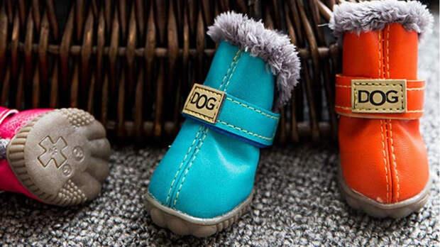 Обувь для собак должна быть не только красивой, но и качественной, удобной и надёжной