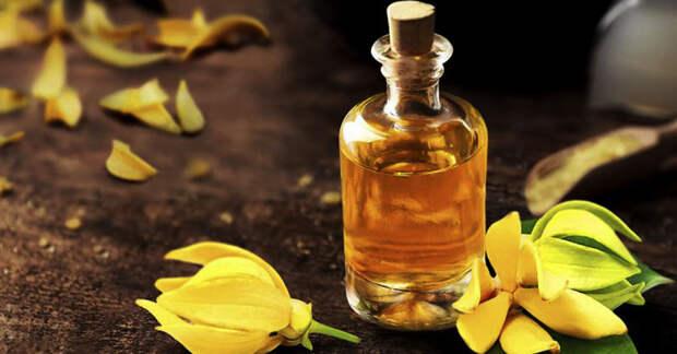 Влияние масла иланг-иланга на здоровье и самочувствие: 5 уникальных свойств