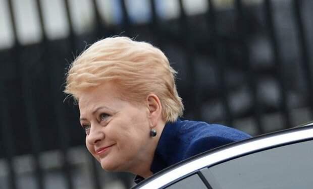 """Грибаускайте: """"Газпром"""" должен выплатить компенсацию странам ЕС"""