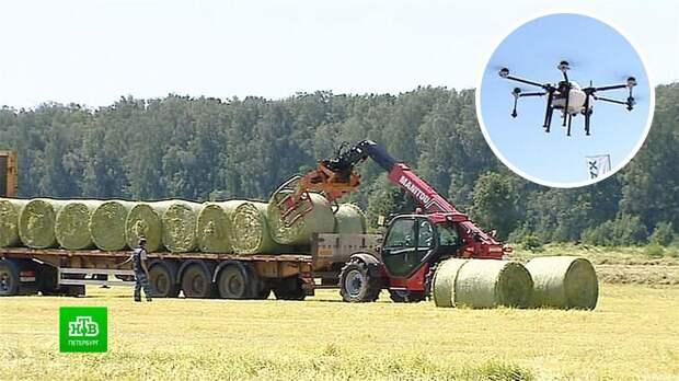 Беспилотные тракторы и дроны выйдут на заготовку кормов в Ленинградской области