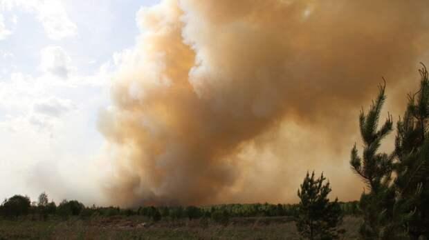 В Иркутской области горит более 30 тыс. га леса