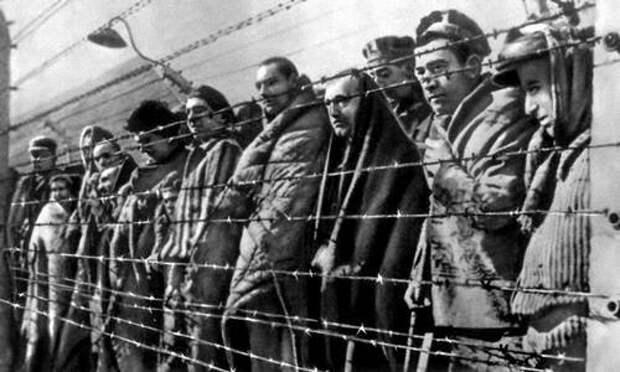 Малоизвестные факты о Великой Отечественной Войне