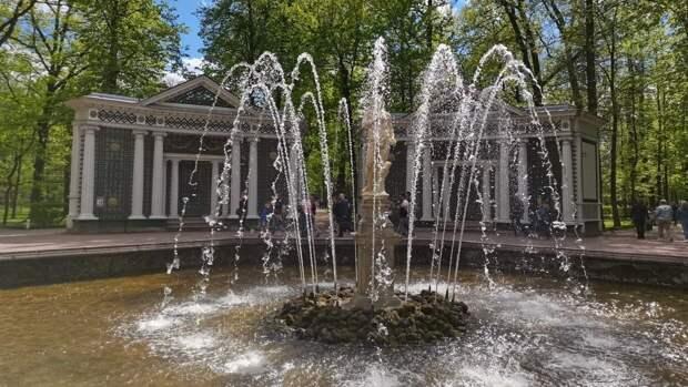 """Праздник фонтанов открыли в музее-заповеднике """"Петергоф"""" 22 мая"""