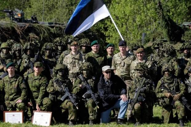 Эстония продолжает делать ставку на русофобию и НАТО