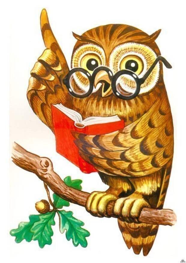 Картинка сова педагоги в начале года и в конце