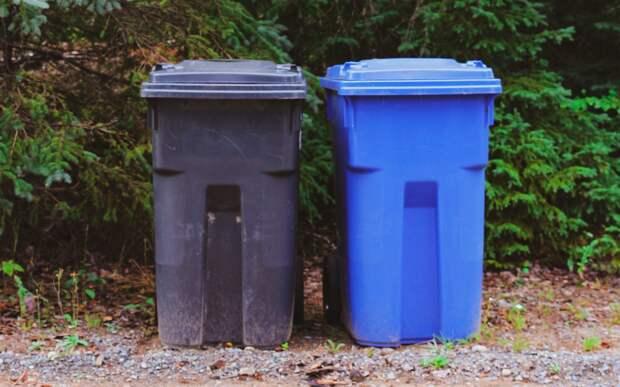 Для вывоза мусора с 3-й Сестрорецкой нужно заключить договор — префектура