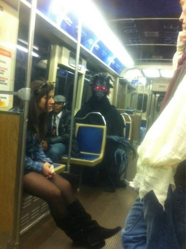 21 удивительное фото того, что можно увидеть в общественном транспорте