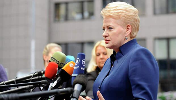 Президента Литвы обвинили в обслуживании интересов США
