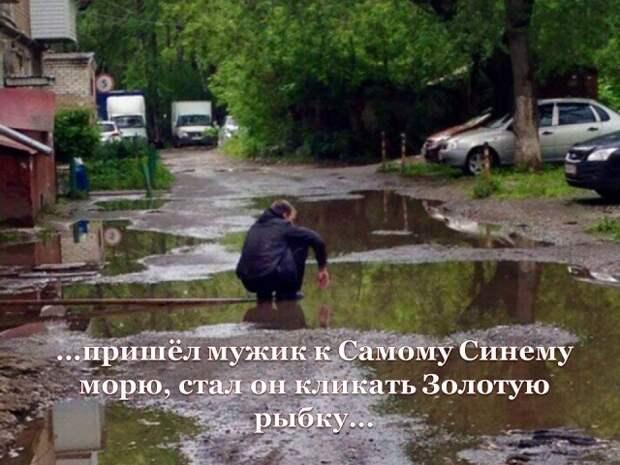 Несерьёзный взгляд на серьёзную жизнь Выпуск 17 (10 фото).