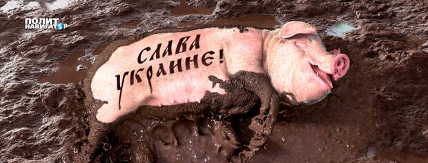 Над Украиной собираются черные тучи – киевская пропаганда