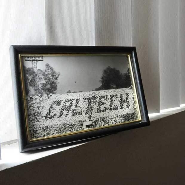 Фотография сделана во  время знаменитого трюка Caltech.