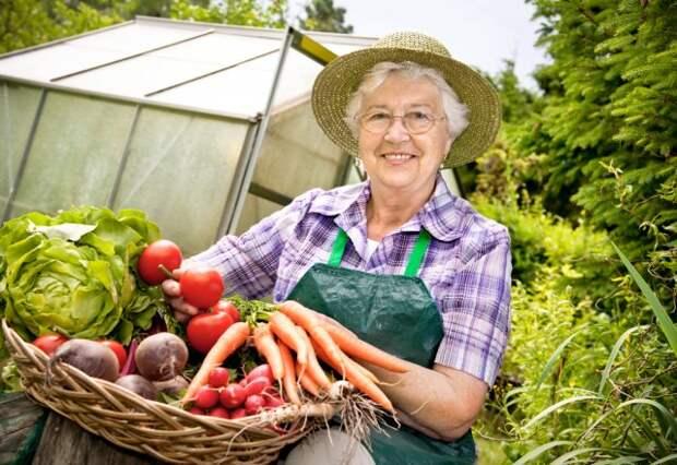 Экологически чистый урожай