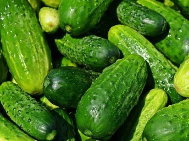 Власти увлеклись борьбой с коронавирусом и забыли об овощном рынке страны