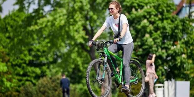 Депутат МГД Самышина рассказала о правилах безопасного летнего отдыха / Фото: mos.ru