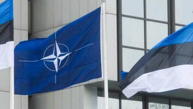 В Эстонии предложили направить ракеты на Петербург и топить торговые суда