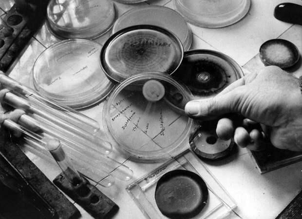 Десять научных открытий, которые произошли случайно