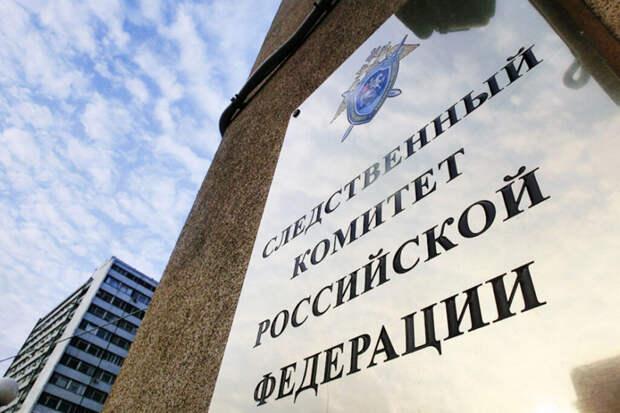 СК возбудил дело о призывах к массовым беспорядкам в дни голосования