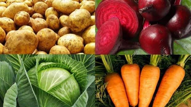 Назван лучший овощ для поддержания здоровья сердца, мозга и кишечника